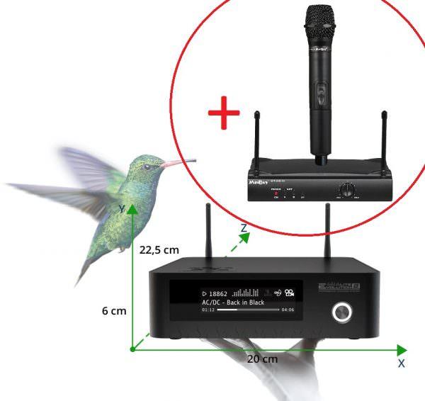 Evolution Lite2 караоке система с радиомикрофоном MadBoy U-TUBE 10