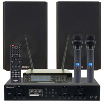 madboy-flagman-komplekt-karaoke-onlajn-dlja-pomeshhenija-20m2-210x210